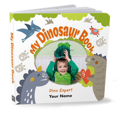 My Dinosaur Book